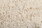 Berber tapijt aanbieding Maroc Berber 66_